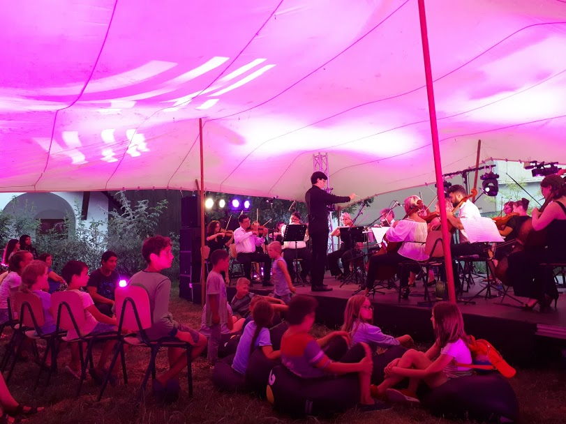 sat Lenauheim - TM Chamber Orchestra - proiect ''tribul artistic''