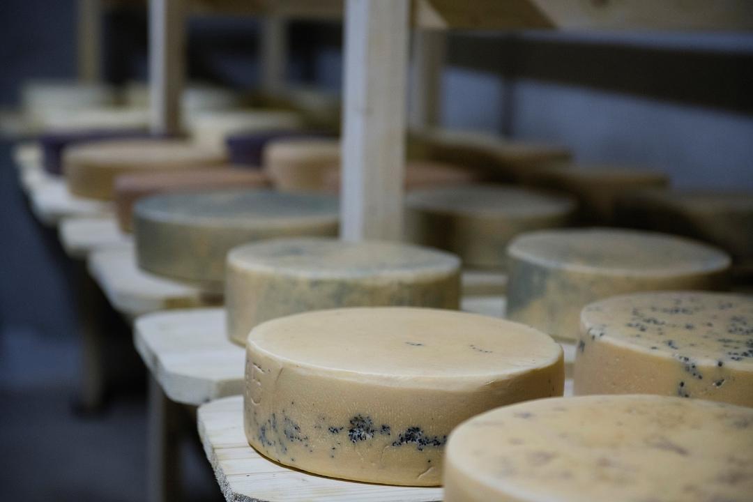 Meșendorf brânză artizanală maturată, Producători Locali Autentici
